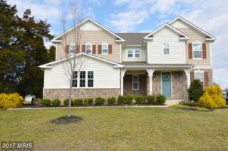 42004 Donnington Place, Ashburn, VA 20148 (#LO9916067) :: Pearson Smith Realty