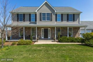 14194 Salem Church Way, Purcellville, VA 20132 (#LO9916614) :: Pearson Smith Realty