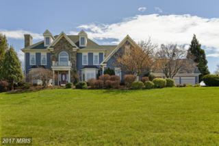 16080 Gold Cup Lane, Paeonian Springs, VA 20129 (#LO9918456) :: Pearson Smith Realty