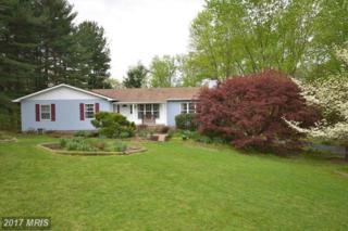 17705 Silcott Springs Road, Purcellville, VA 20132 (#LO9919704) :: Pearson Smith Realty