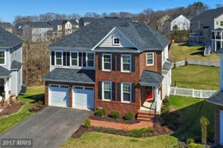 21208 Lady Fern Place, Ashburn, VA 20148 (#LO9919897) :: Pearson Smith Realty
