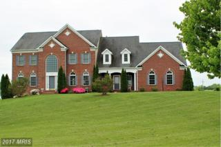 16607 Goldencrest Circle, Purcellville, VA 20132 (#LO9920010) :: Pearson Smith Realty