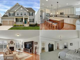 23468 Somerset Crossing Place, Ashburn, VA 20148 (#LO9920356) :: Pearson Smith Realty