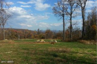 Old Blue Ridge Road, Bluemont, VA 20135 (#LO9920426) :: Pearson Smith Realty