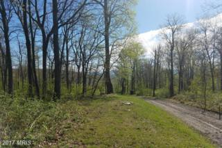 Old Blue Ridge Road, Bluemont, VA 20135 (#LO9920522) :: Pearson Smith Realty