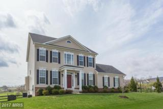 14154 Paris Breeze Place, Purcellville, VA 20132 (#LO9920579) :: Pearson Smith Realty
