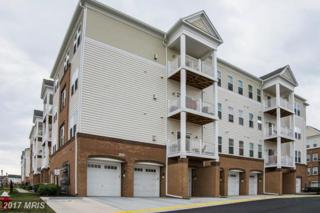 24636 Woolly Mammoth Terrace #200, Aldie, VA 20105 (#LO9920813) :: Pearson Smith Realty