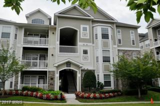 510 Sunset View Terrace SE #301, Leesburg, VA 20175 (#LO9921161) :: Pearson Smith Realty
