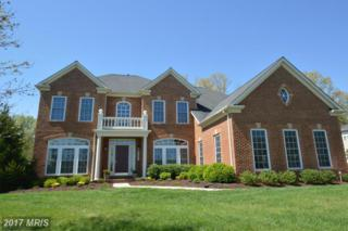 42591 Unbridleds Song Place, Chantilly, VA 20152 (#LO9921557) :: Pearson Smith Realty