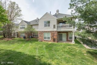 45091 Brae Terrace #203, Ashburn, VA 20147 (#LO9921648) :: Pearson Smith Realty