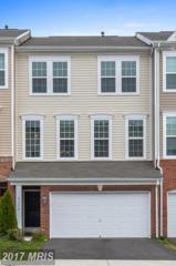 41850 Diabase Square, Aldie, VA 20105 (#LO9921676) :: LoCoMusings