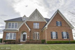 40541 Ivybridge Lane, Leesburg, VA 20175 (#LO9922541) :: Pearson Smith Realty