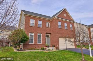 46062 Earle Wallace Circle, Sterling, VA 20166 (#LO9922866) :: Pearson Smith Realty