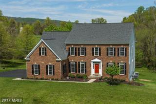 17443 Flint Farm Drive, Round Hill, VA 20141 (#LO9924382) :: Pearson Smith Realty
