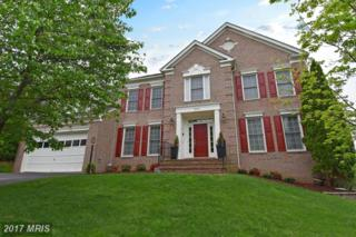 20391 Rupert Island Place, Sterling, VA 20165 (#LO9924448) :: A-K Real Estate