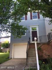 520 Kalmia Square NE, Leesburg, VA 20176 (#LO9924695) :: Pearson Smith Realty