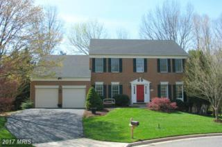 47169 Timberland Place, Sterling, VA 20165 (#LO9924788) :: Pearson Smith Realty