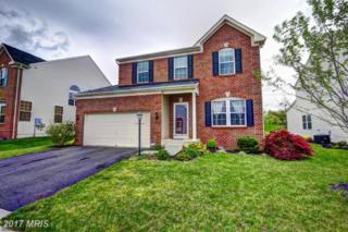 25051 White Sands Drive, Chantilly, VA 20152 (#LO9925035) :: Pearson Smith Realty