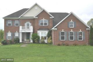 14267 Bookcliff Court, Purcellville, VA 20132 (#LO9926422) :: Pearson Smith Realty