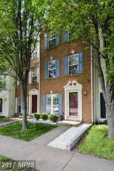 44247 Litchfield Terrace, Ashburn, VA 20147 (#LO9926670) :: LoCoMusings