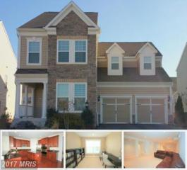 42649 Willow Bend Drive, Ashburn, VA 20148 (#LO9926720) :: Pearson Smith Realty