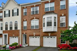 20467 Alicent Terrace, Ashburn, VA 20147 (#LO9926901) :: Pearson Smith Realty