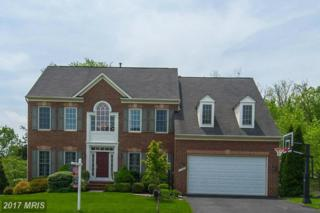 18502 Cattail Spring Drive, Leesburg, VA 20176 (#LO9927228) :: Pearson Smith Realty