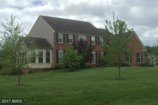 38563 Bettis Drive, Hamilton, VA 20158 (#LO9927319) :: LoCoMusings