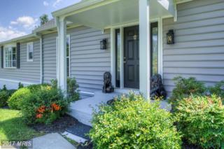 23302 Dover Road, Middleburg, VA 20117 (#LO9927619) :: LoCoMusings