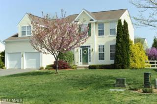 35766 Chapel Hill Court, Round Hill, VA 20141 (#LO9927702) :: Pearson Smith Realty