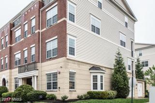 42596 Hollyhock Terrace #42596, Ashburn, VA 20148 (#LO9928011) :: LoCoMusings