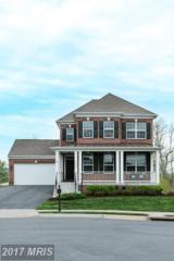 43080 Little Angel Court, Leesburg, VA 20176 (#LO9928257) :: Pearson Smith Realty