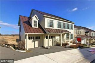 122 Jay Street N, Middleburg, VA 20117 (#LO9928354) :: LoCoMusings