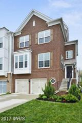 43566 Heritage Gap Terrace, Chantilly, VA 20152 (#LO9928525) :: Pearson Smith Realty