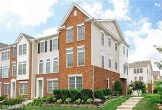 25120 Neptune Terrace, Chantilly, VA 20152 (#LO9929032) :: Pearson Smith Realty