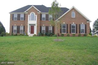 42479 Longacre Drive, Chantilly, VA 20152 (#LO9929231) :: Pearson Smith Realty