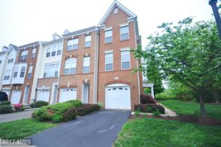 20476 Alicent Terrace, Ashburn, VA 20147 (#LO9929304) :: Pearson Smith Realty