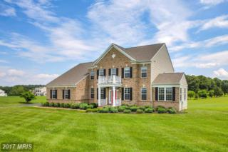 23086 Steger Place, Leesburg, VA 20175 (#LO9929374) :: Pearson Smith Realty