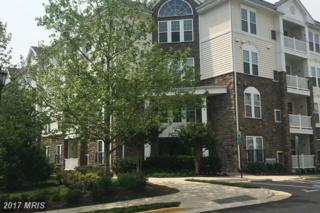 24701 Byrne Meadow Square #403, Aldie, VA 20105 (#LO9929441) :: Pearson Smith Realty