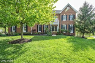 22749 Zulla Chase Place, Ashburn, VA 20148 (#LO9929469) :: Pearson Smith Realty