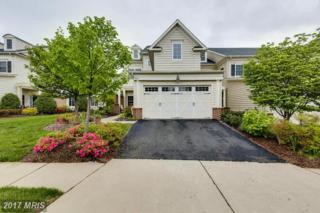20564 Rosewood Manor Square, Ashburn, VA 20147 (#LO9929655) :: Pearson Smith Realty