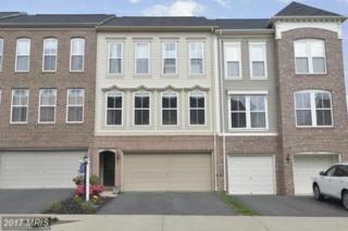 23412 Spice Bush Terrace, Ashburn, VA 20148 (#LO9929691) :: Pearson Smith Realty