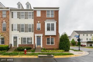 25136 Mcbryde Terrace, Chantilly, VA 20152 (#LO9929713) :: Pearson Smith Realty