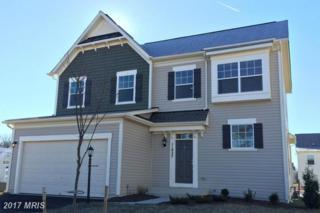 Upper Heyford Pl, Purcellville, VA 20132 (#LO9929958) :: Pearson Smith Realty
