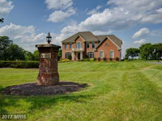 16762 Chestnut Overlook Drive, Purcellville, VA 20132 (#LO9930002) :: LoCoMusings