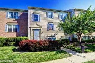 1133 Huntmaster Terrace NE #301, Leesburg, VA 20176 (#LO9930782) :: Pearson Smith Realty