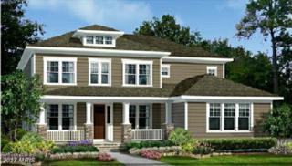 24455 Haven Ridge Lane, Aldie, VA 20105 (#LO9930880) :: LoCoMusings