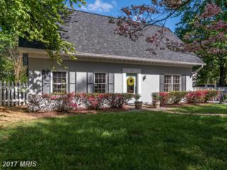 201 Maple Street, Middleburg, VA 20117 (#LO9930907) :: LoCoMusings