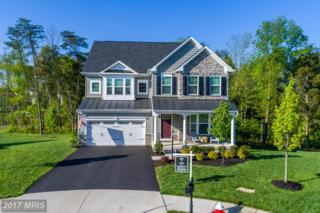 41829 Walden Knoll Court, Aldie, VA 20105 (#LO9931077) :: Pearson Smith Realty