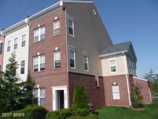 22559 Blue Elder Terrace, Ashburn, VA 20148 (#LO9931104) :: LoCoMusings